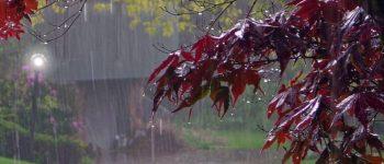 بارندگی ها در کشور ادامه دارد